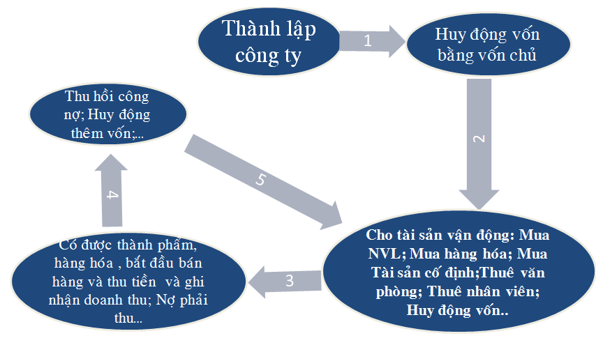 Quy trinh hoat dong cong ty